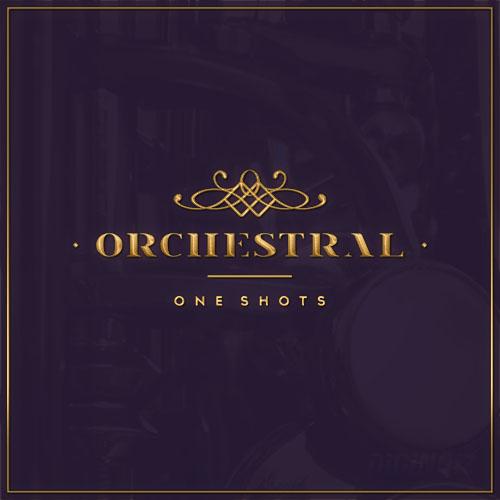 Diginoiz_-_Orchestral_One_Shots_Cd